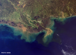 The hottest hotspot of land-based impact on marine ecosystems is the Mississippi River. The river plume is shown here as seen from space.