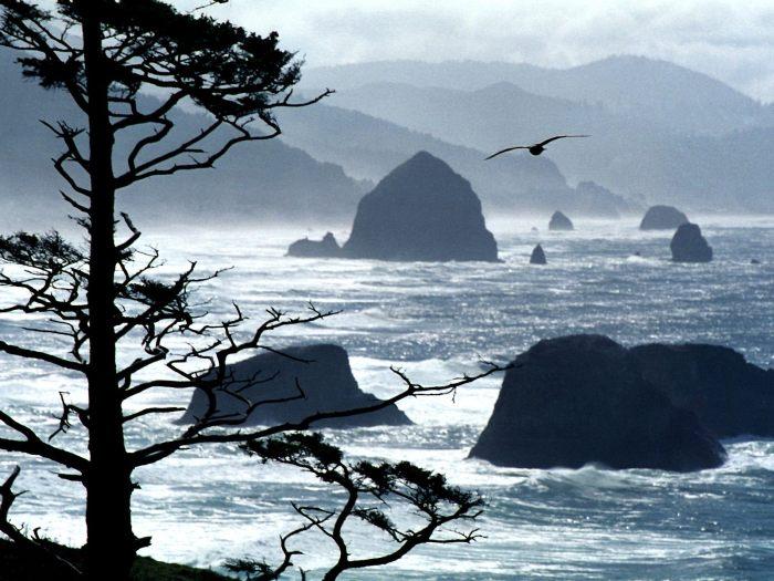 Ecola Point, Oregon Coast