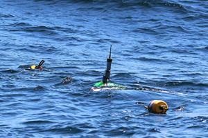 hoto to the right is our existing telemetry buoy (green buoy with antennae) that was attached to line with the crab pot buoy floats that was entangled on the humpback whale on April 27, 2014.