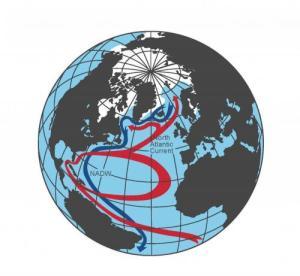 The Atlantic Conveyor -- a graph of the Atlantic Meridional Overturning Circulation. Credit: Stefan Rahmstorf/PIK