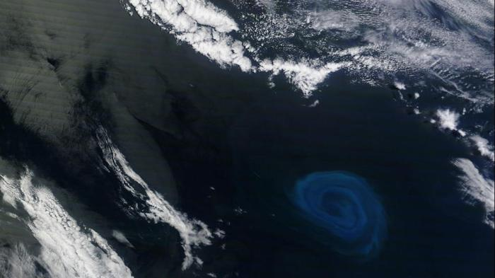 The recently discovered dead zones in the Atlantic form in eddies, similar to the one above, shown in blue in the bottom-right corner. (NASA Earth Observatory)