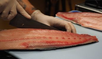 """""""The types of fish that we will have on our dinner table will be very different in the future."""""""