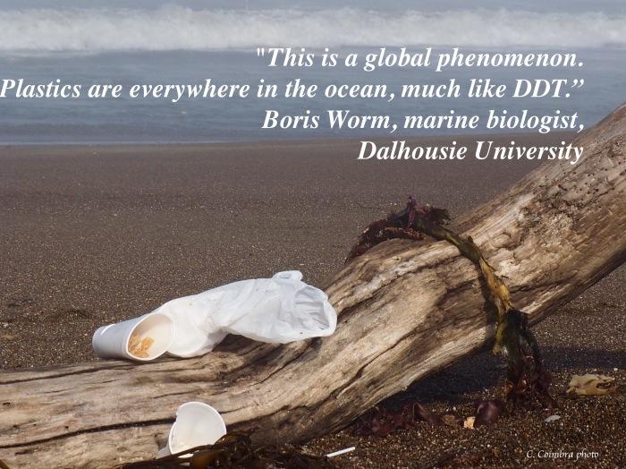 Plastics Like DDT
