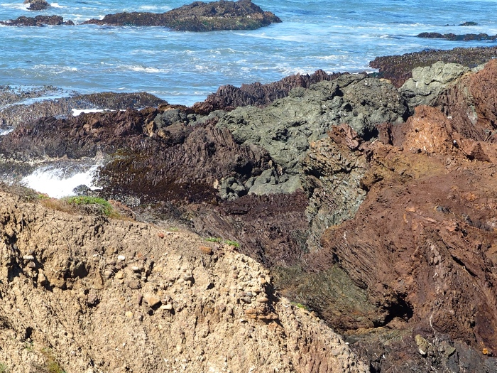 Estero Bay to be included in proposed Chumash National Marine Sanctuary. C. Coimbra photo