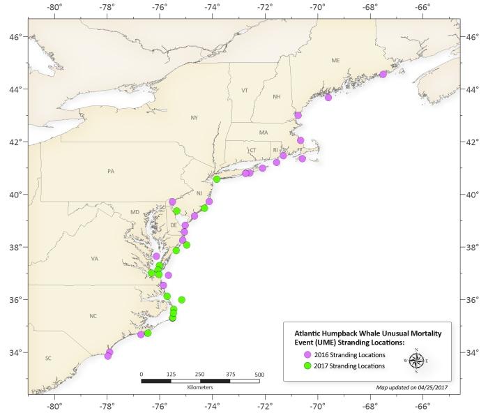 humpbackstrandingmap